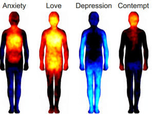How Emotions Affect the Body